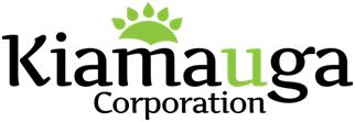 Ottawa Logo Design